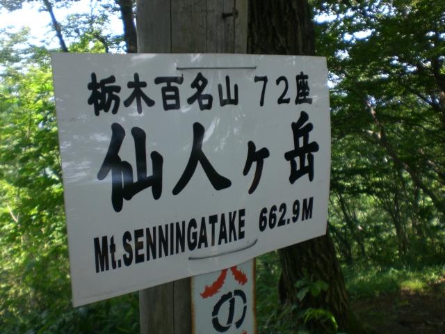 CIMG7227.JPG